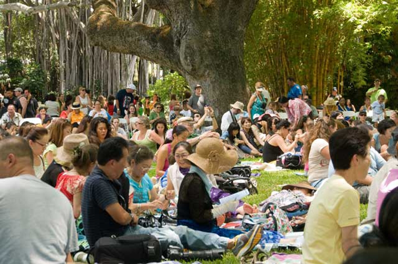 in-the-lush-shade-of-moanalua-gardens-the-audience-enjoys-the-performances